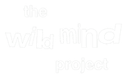 The Wild Mind Project – the nature of creating wellbeing for young people